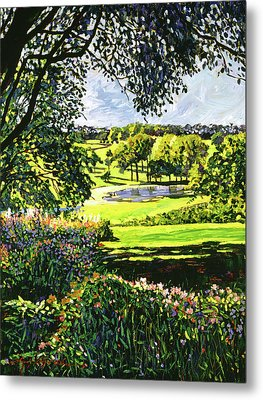 English Country Pond Metal Print by David Lloyd Glover