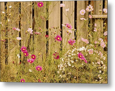 English Garden Metal Print by Susan Maxwell Schmidt