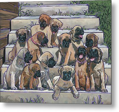 English Mastiff Puppies Metal Print by Nadi Spencer