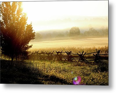 English Morning Metal Print