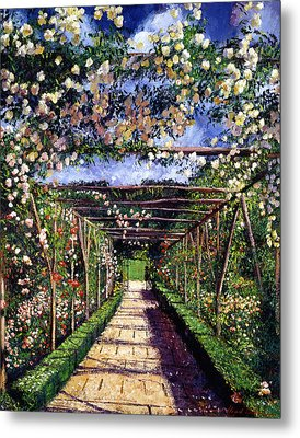 English Rose Trellis Metal Print by David Lloyd Glover