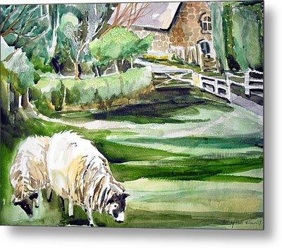 English Sheep Metal Print by Mindy Newman