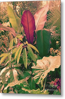 Metal Print featuring the photograph Enlightened Jungle by Rebecca Harman