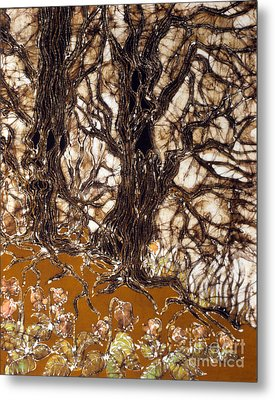 Ent Tree Forest Metal Print by Carol Law Conklin