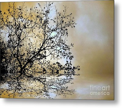 Metal Print featuring the photograph Entangled by Elfriede Fulda