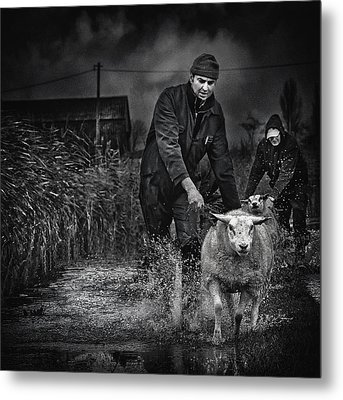 Escape From The Flood Metal Print by Piet Flour