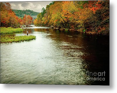 Escape To Beaver's Bend Metal Print by Tamyra Ayles