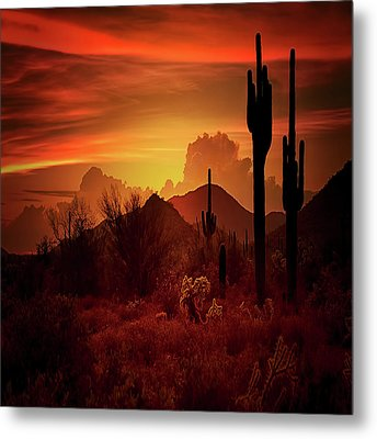 Metal Print featuring the photograph Essence Of The Southwest - Square  by Saija Lehtonen