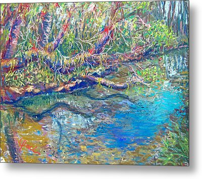 Estero River West Metal Print by Laurie Paci