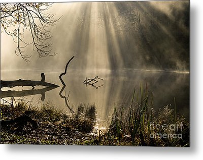 Metal Print featuring the photograph Ethereal - D009972 by Daniel Dempster