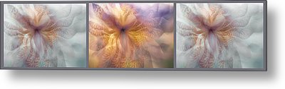 Ethereal Life Of Iris. Moon And Sun. Triptych Metal Print by Jenny Rainbow