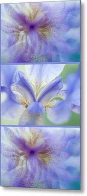 Ethereal Life Of Iris. Vertical Triptych Metal Print by Jenny Rainbow