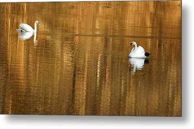 Metal Print featuring the photograph Ethereal Peace by Elsa Marie Santoro