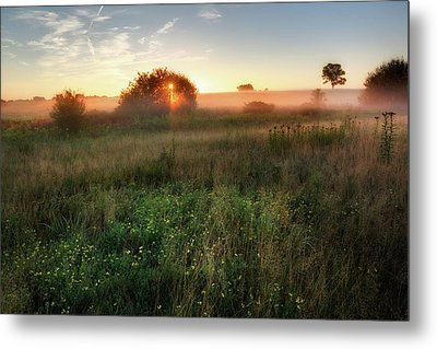 Ethereal Sunrise Metal Print by Bill Wakeley