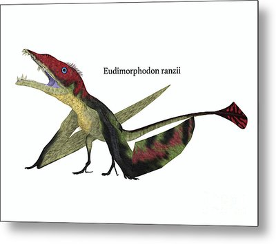 Eudimorphodon Resting With Font Metal Print by Corey Ford