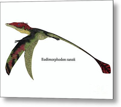 Eudimorphodon Wings Down With Font Metal Print by Corey Ford