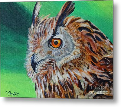 Eurasian Eagle-owl Metal Print by Isabel Proffit