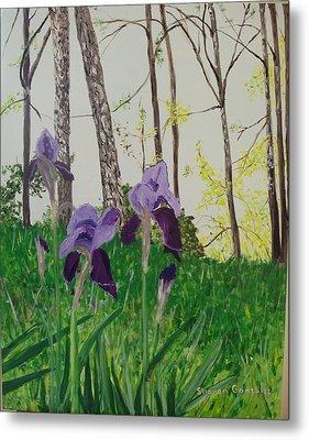 Eureka Springs Irises Metal Print by Sharon  De Vore