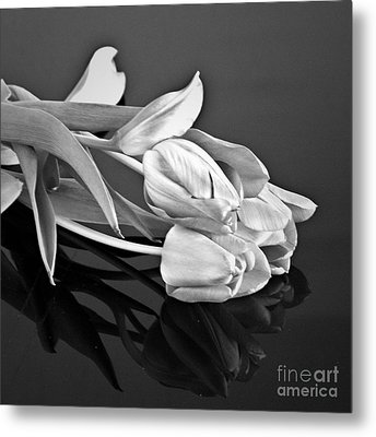 Even Tulips Are Beautiful In Black And White Metal Print by Sherry Hallemeier