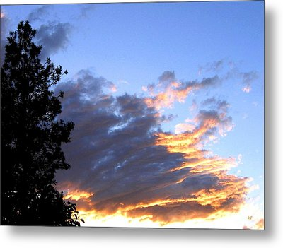 Evening Color Metal Print by Will Borden