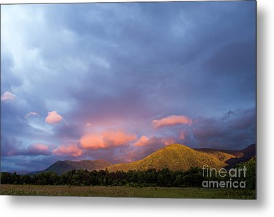 Metal Print featuring the photograph Evening In Cades Cove - D009913 by Daniel Dempster