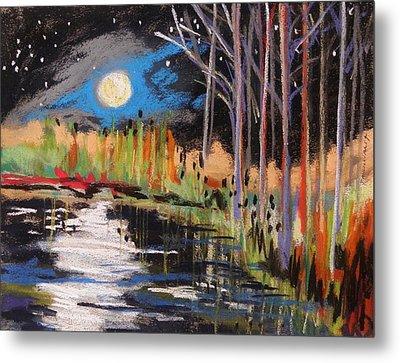 Evening Near The Pond Metal Print by John Williams