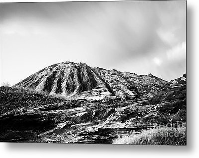 Evening On Koko Crater Metal Print by Charmian Vistaunet