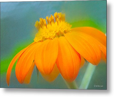 Evening Orange Greeting Card Metal Print by William Martin