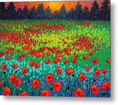 Evening Poppies Metal Print