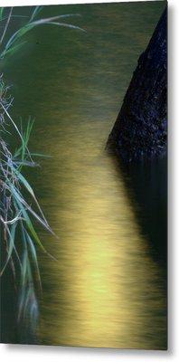 Metal Print featuring the photograph Evening Reflections by Karen Musick