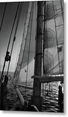 Evening Sail Bw Metal Print