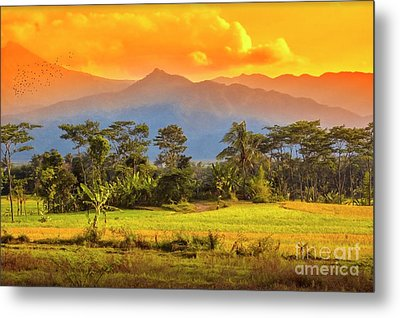 Metal Print featuring the photograph Evening Scene by Charuhas Images