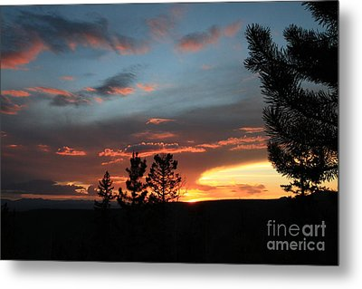 Evening View  Metal Print by Edward R Wisell