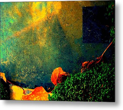 Ever Changing Metal Print by Shirley Sirois