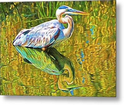 Everglades Blue Heron Metal Print by Dennis Cox