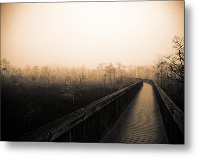 Everglades Boardwalk Metal Print