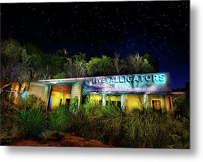 Everglades Gatorland Metal Print by Mark Andrew Thomas