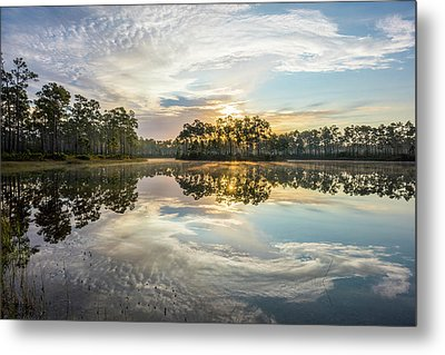 Everglades Ovation Metal Print by Jon Glaser