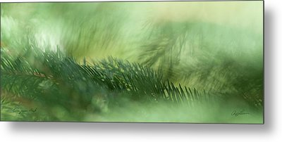 Evergreen Mist Metal Print by Ann Lauwers