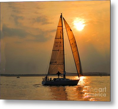 Every Once In A While Metal Print by Christine Segalas