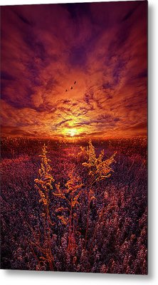 Metal Print featuring the photograph Every Sound Returns To Silence by Phil Koch