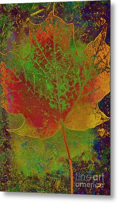 Evolution Of Life Metal Print