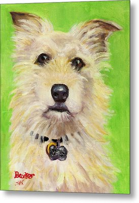 Example Of Pet Portrait Metal Print by Sheila Kinsey