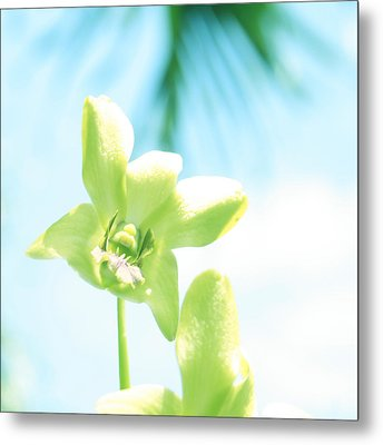 Exotic Orchid Beauty Metal Print by Georgia Fowler