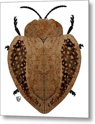 Exotic Wood Tortoise Beetle Metal Print