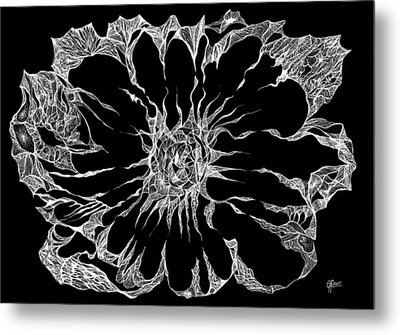 Expanded Consciousness Metal Print