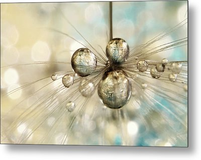 Exploding Dandy Drops Metal Print by Sharon Johnstone