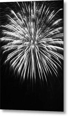 Metal Print featuring the photograph Explosion by Colleen Coccia