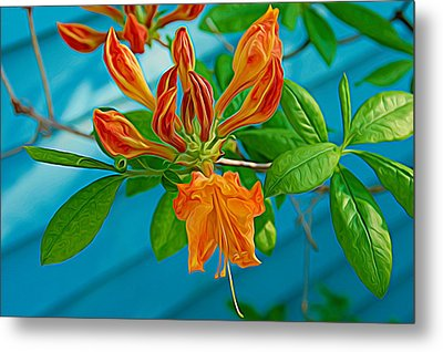 Metal Print featuring the photograph Expressionalism Budding Azalea by Aimee L Maher Photography and Art Visit ALMGallerydotcom