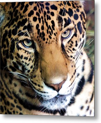 Eye Of The Leopard Metal Print